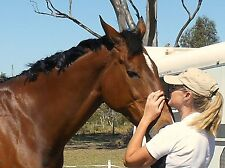 HERBS FOR HORSES 1kg Chia Seeds - Super Supplement