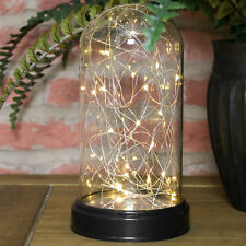 23CM BATTERY OPERATED INDOOR GLASS DOME CHRISTMAS FAIRY STRING 20 LED LAMP LIGHT