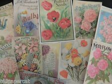Lot of 12 VINTAGE Bulb Garden Seed & Catalog DIE CUTS 4 Cardmaking FREE SHIP~S22
