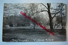 Play Ground WHITEHALL Michigan vintage RPPC postcard, City Park, cannon