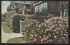Postcard OAKLAND California/CA  Residence St Houses/Homes in Winter view 1907