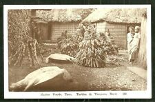 Native Foods rppc Taro Turtle Yangona Roots Fiji 30s