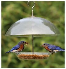 Clear Dome Bird Seed Feeder For Small Birds Robins - Keeps Big Birds Out BFDOME