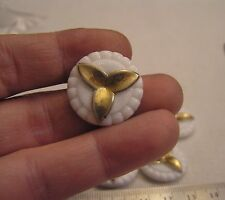 12 Vtg 23mm White Glass w Gold Flower FlatBack Cameo Jewelry 1/2 Drilled add Pin