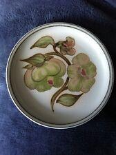 Denby Troubadour Tea Plate 17cm / 6.5 Inch