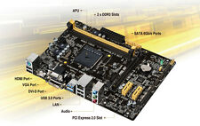 Asus mATX Motherboard + AMD 5350 4x-Core APU/CPU w/HS&F, Radeon HD 8400 Graphics