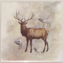 "Elk or Deer Ceramic Tile 6.00"" x 6.00"" Kiln Fired Back Splash Tile"