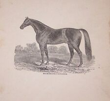ORG LATE 1800'S BOOKPLATE PRINT MAMBRINO PATCHEN-HORSE-FARM-(A2)