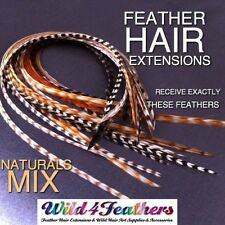 Natural Feather Hair Extensions Grizzly Salon Long Feathers Hook Tool Beads Kit