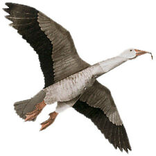 Jackite Blue Goose Decoy Kite / Windsock