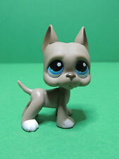 #184 chien dogue Argentin Gris Grey great dane dog LPS Littlest Pet Shop Figure