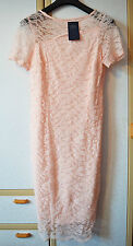 M&S Collection Pink Floral Lace Bodycon Dress Size 12 Regular BNWT