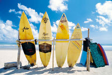 SURFING Poster - Surfboards On The Beach Full Size 24x36 ~ Tropical Scenic