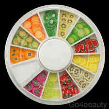 240 Pcs 3D Fruit Fimo Slices Set with free wheel