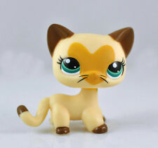 Pet Short Hair Cat Rare Collection Child Girl Figure Cute Toy Loose LP641