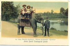 Zoo, Zoologischer Garten New York, Indischer Elefant, um 1910