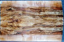 Ambrosia Spalted Curly Maple #6609 Luthier 2 PC. Bass Guitar top 25 x 16+ x 3/8