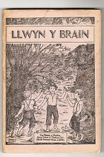 Daniel Williams - Llwyn Y Brain 1st Ed 1939 / Welsh Text