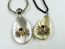 PAIR Real Spider Resin Lucid Drop Design Keychain Pendant Cool Insect Specimen