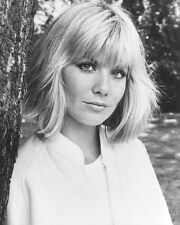 "Glynis Barber Blakes 7  10"" x 8"" Photograph no 14"
