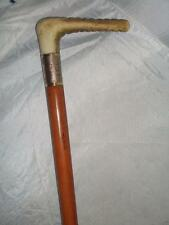 ***Antique Hunt Whip-Gold Plate Collar- Malacca Cane- Antler handle 74cm***