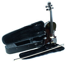 Full size 4/4 Violin Outfit, Solid Spruce Top & Case, Bow and Rosin-blue, pink