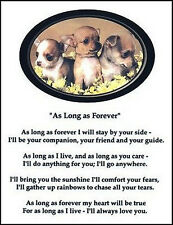 """Beautiful CHIHUAHUA print """"AS LONG AS FOREVER"""" photo puppies art poem sign NEW!"""