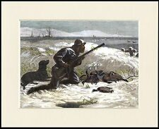 FLAT COATED RETRIEVER MAN DOG DUCK SHOOTING PRINT MOUNTED READY TO FRAME