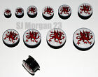 Welsh Dragon Ear Ring Plug Stretcher in Sizes: 6 8 10 12 14 16 18 20 22 25 mm