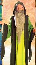 Boys Halloween Costume Small 4-6 Wizard Merlin Robe Green Kids Child Camelot