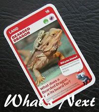Woolworths AUSSIE ANIMALS  Series 2 Baby Wildlife CARD 16/36 LAND Bearded Dragon