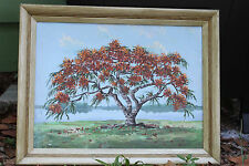 Original Oil Painting by Kurt Griesshaber Port. Royal Poinciana in Flower Framed