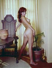 1960s Nude red head pinup Posing at dinning room window 8 x 10 Photograph