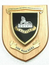2ND BTN ROYAL ANGLIAN REGIMENT CLASSIC HAND MADE IN UK REGIMENTAL MESS PLAQUE