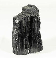 Natural Black Tourmaline Quartz Crystal Specimen from Brazil