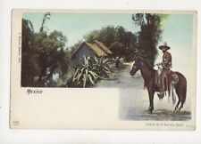 Mexico Soldado De La Guardia Royal Vintage U/B Postcard 114b