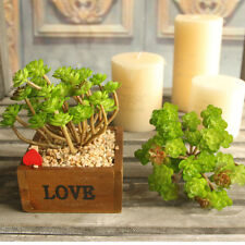 Jade Green Artificial Fake Real Touch Leaf Plant Succulents Landscape Cactus