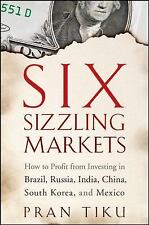 Six Sizzling Markets: How to Profit from Investing in Brazil, Russia, India, Chi