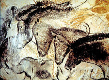 Chauvet Cave Horses - 18x24 on Canvas - 30,000 Years old Art