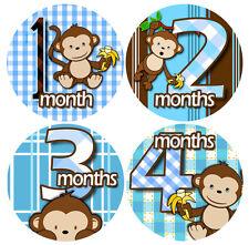1-12 Monthly Baby Stickers - Bodysuit Romper Stickers - BLUE BANANA MONKEYS