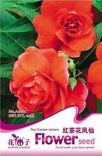 1 Bag 20 Seeds Red Garden Balsam Impatiens Balsamina Flower Seed A002