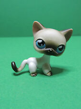 #05 Chat Cat white Shorthair european 2006 LPS Littlest Pet Shop Figure Figurine