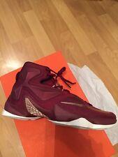 Brand New Nike Lebron XIII Size UK 11 (EUR 46  ) 807219 690 Burgundy Maroon
