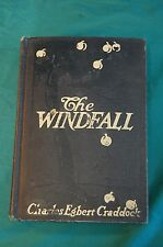 The Windfall by Charles Egbert Craddock Duffield & Company 1907