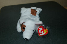 BUTCH the BULL Terrier  DOG  - Ty Beanie Baby  - MWMT - Too Cute - Fast Shipping