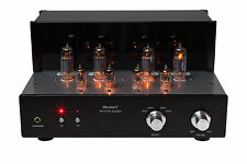 DestinY Audio 6P1P High End HiFi Röhrenverstärker Tube Amplifier