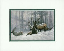 Mountain Majesty Bull Elk Larry Fanning Wildlife Double Matted Fits 8x10 Frame