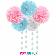 Gender Reveal Party Decorations 5 tissue poms cloud and heart garland