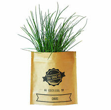 NEW Chives herb in a bag by Sow Grow Eat