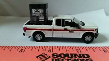 1/64 CUSTOM Ford f150 pioneer hybrids dealer TRUCK probox of seed ERTL farm toy